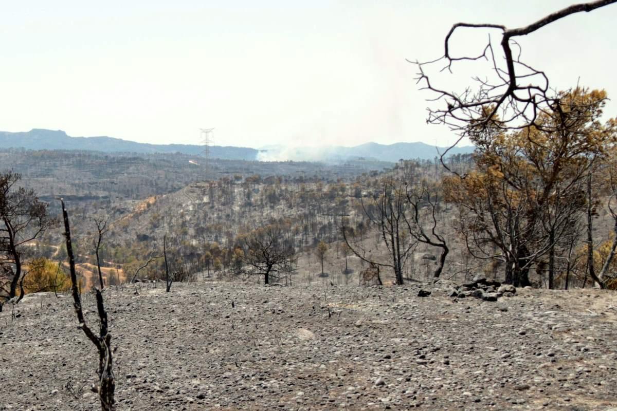 Enorme incendio in Catalogna