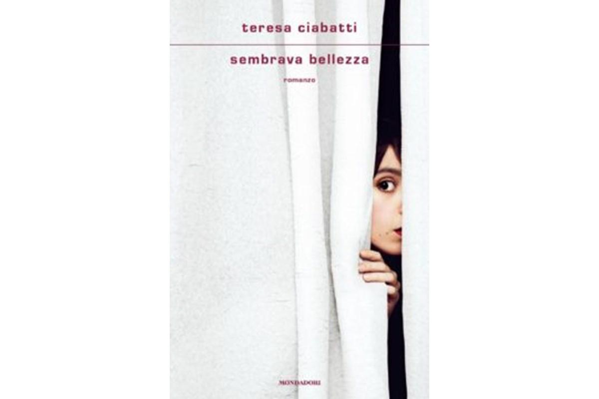 Teresa Ciabatti, Sembrava bellezza. Mimmo Parisi, Nemmeno il tempo di un abbraccio