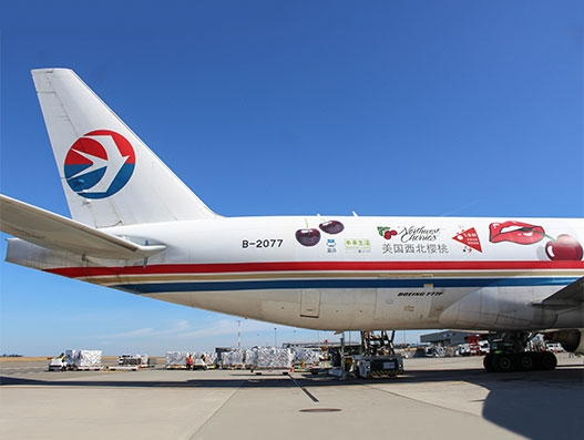 Cherry Express makes a stop at Sea-Tac Airport to carry cherries | Air Cargo