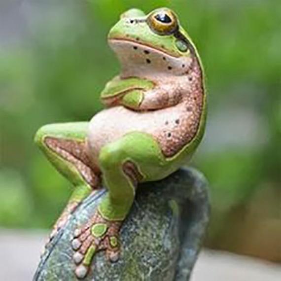 44 Photos Prove That Animals Behaving Like Humans|Funny Animals Behaving Like Humans.