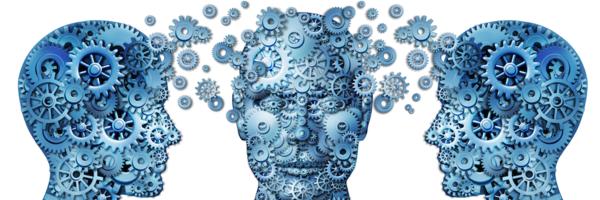 Adolescenza, l'età aurea del cervello