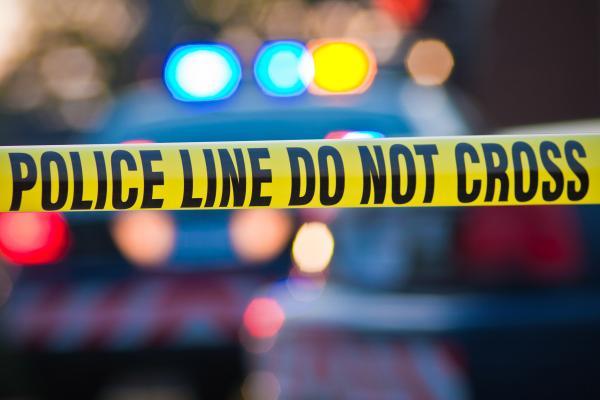 Stati Uniti, la polizia trova a New York altre otto bombe pronte ad esplodere