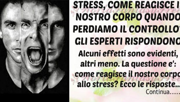 Stress: Ecco gli effetti che provoca, come reagisce il nostro corpo e perché fa male alla salute.