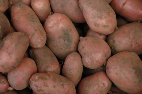 Gnocchi fatti in casa: e se li prepariamo con le patate rosse??