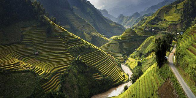 Alla scoperta della biodiversità in Vietnam