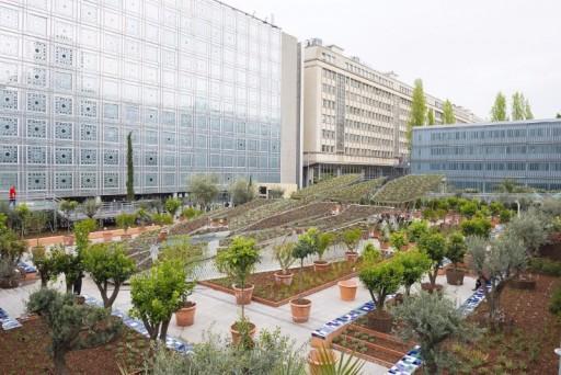 Giardini d'Oriente: Quando la Natura Diventa Arte