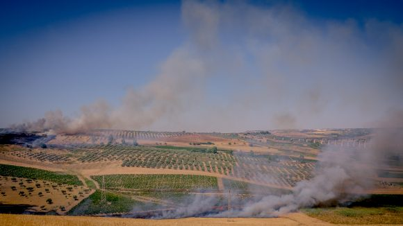 Incendio vicino Marinella di Selinunte, alta colonna di fumo
