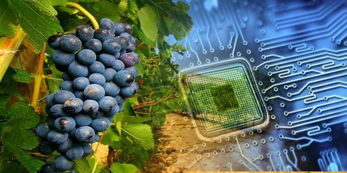 La tecnologia applicata all'agricoltura