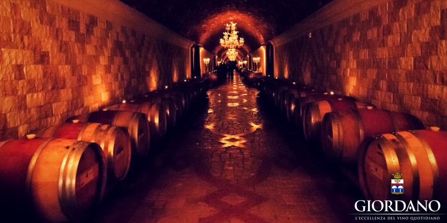 Il lento lavoro che trasforma il vino in capolavoro: invecchiamento e affinamento in bottiglia