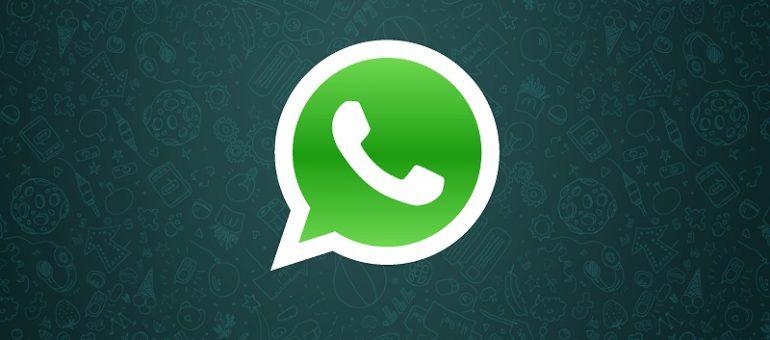 Whatsapp: nuovo aggiornamento disponibile per Windows Phone | Surface Phone Italia