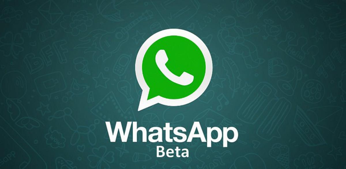 Whatsapp beta: ecco che arriva l'ennessimo aggiornamento disponibile con tante novità | Surface Phone Italia