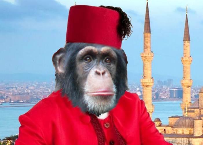 Nelle scuole turche non si insegnerà la teoria dell'evoluzione di Charles Darwin