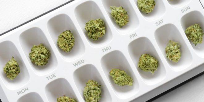 La marijuana al centro delle ricerche sulle malattie neurodegenerative