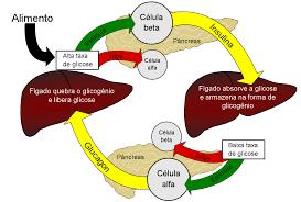 Come tenere sotto controllo la glicemia in modo naturale