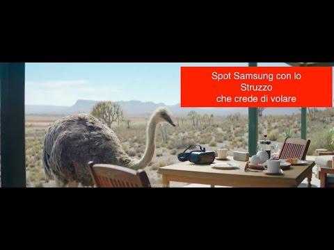 Pubblicità: Samsung fa un regalo allo struzzo