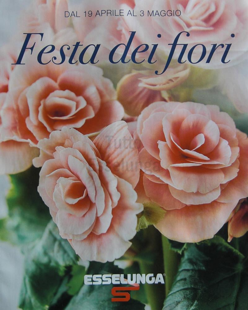 Festa dei fiori, sconti Esselunga su piante e fiori