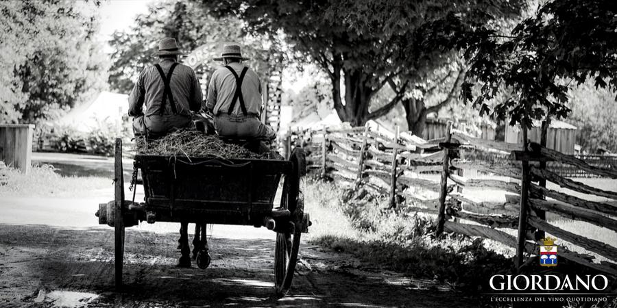 Storie contadine: quando il vino in tavola era un prezioso alimento