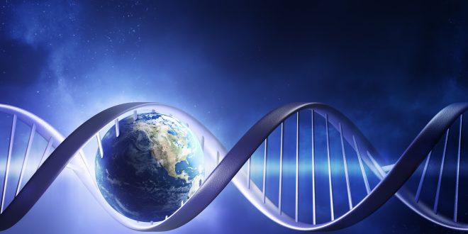 Cos'è il Codice Genetico?