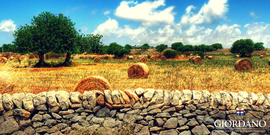 Sicilia segreta: curiosità e fatti poco noti su una delle gemme del Mediterraneo