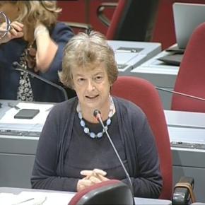 Pensioni e welfare, i commenti dell'On. Gnecchi nell'intervento in Commissioni riunite